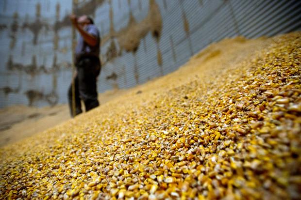 专家展望明年大宗商品期货市场机遇 农产品将呈现大供给与弱需求 大宗商品期货 第1张