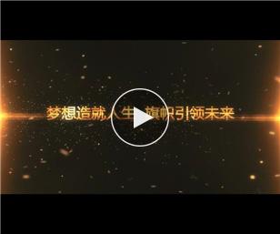 华夏保险2017上半年度凤凰高峰会会长