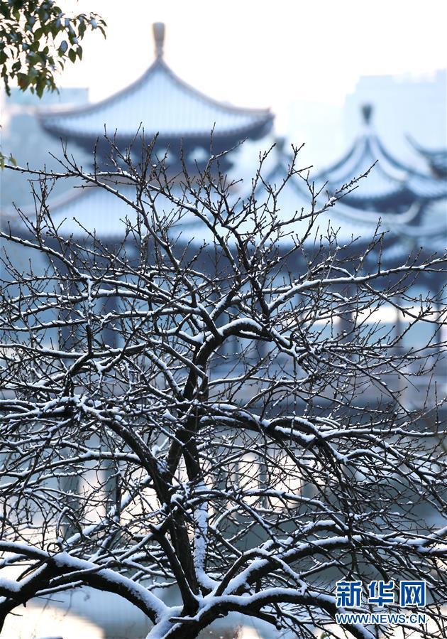 这是12月31日在江苏南通濠西书苑拍摄的雪景。近日,吾国众地迎来降雪,雪后的中国古典修建别有韵味。新华社发(宋诚林)