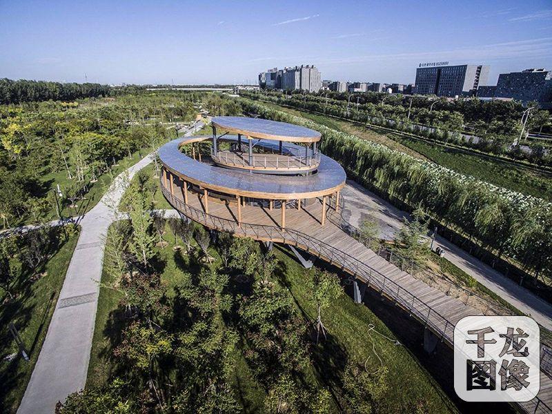 北京大兴将新建三大森林公园图片