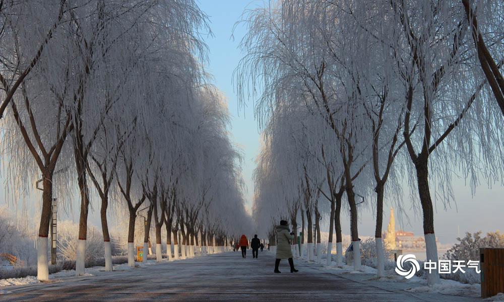 1月31日清晨,甘肃高台县城最低气温降至-20.2℃,受此影响,高台县黑河湿地新区显现雾凇景观。河面上云蒸霞蔚,河干玉树琼花,置身其间,好似走进不染纤尘的童话天下。(图高博 文杨丽�)