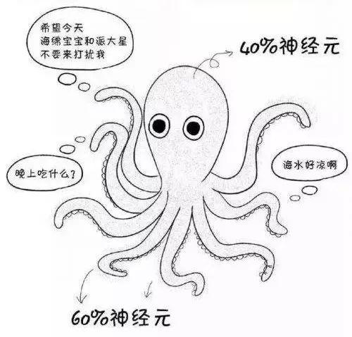 边缘计算就像是拥有众多神经元的章鱼。