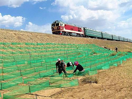 如今,在集二铁路沿线,黄色的沙地逐渐减小,绿色的草木由点连成线、由线串成片,部分区段甚至能看到绿树成荫的景象。
