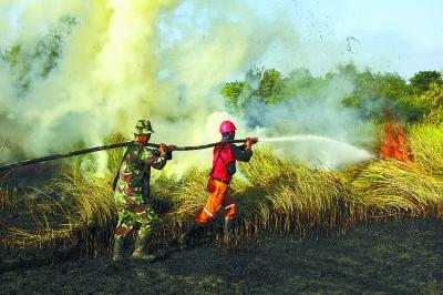 烧芭酿祸 印尼林火再度肆虐