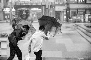 """超强台风""""利奇马""""登陆    江苏发暴雨橙色预警"""