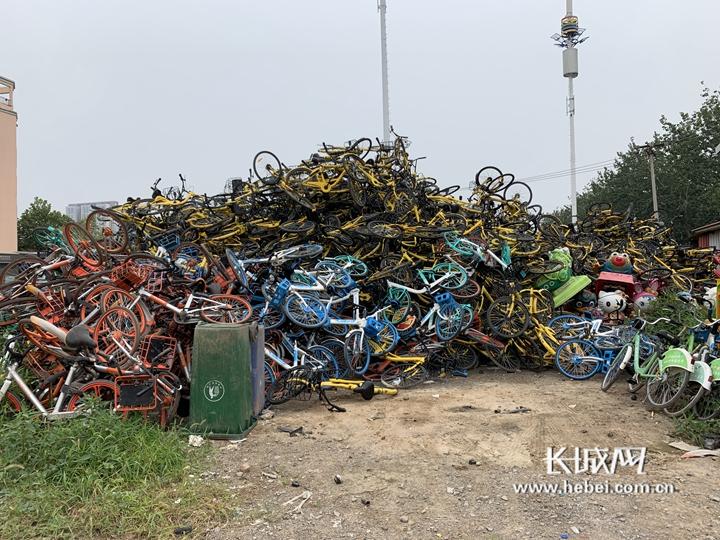 石家庄开始清理整治共享单车