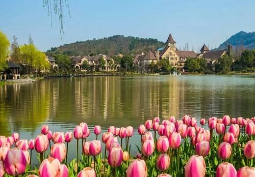 杭州新湖・香格里拉园区实景
