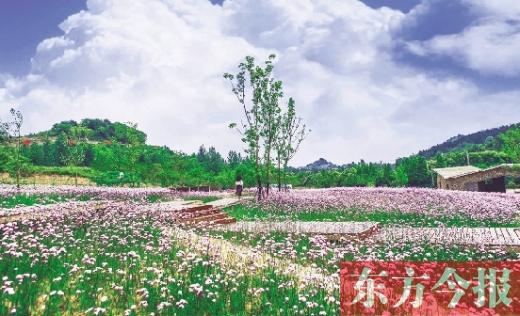 http://www.fanchuhou.com/yishu/1033331.html