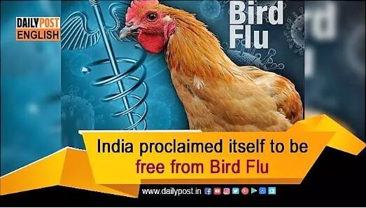 印度宣布本身异国禽流感
