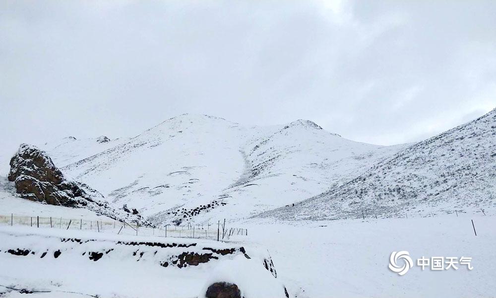 青海南部多地迎暴雪 交通牧业受影响