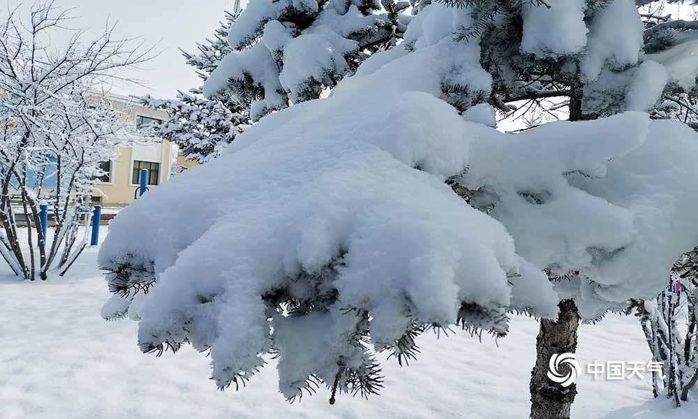 青海贵南天峻两地再降暴雪 重现冬日景象