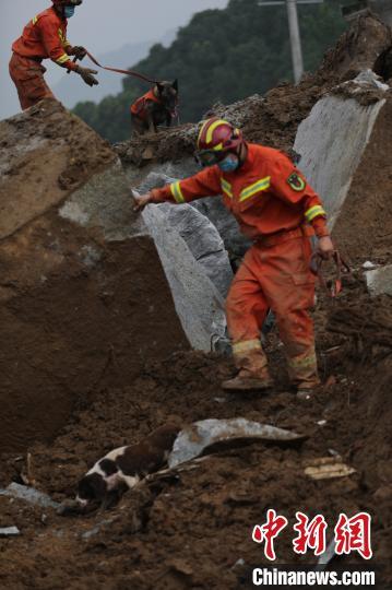 湖北黄梅山体滑坡被困9人已搜救出 1人生还