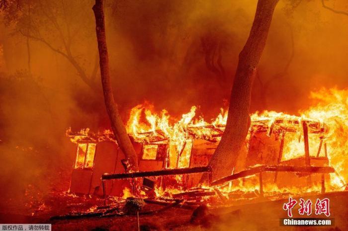 山火持续蔓延 美国加州进入紧急状态