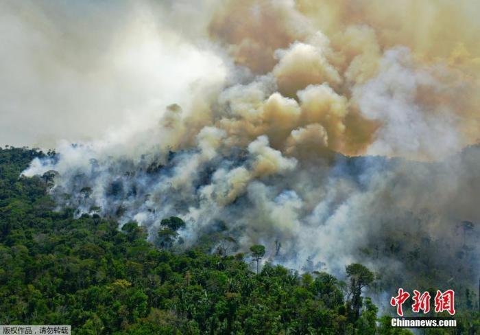 巴西潘塔纳尔湿地8月记录近6000起火灾 创史上第二高