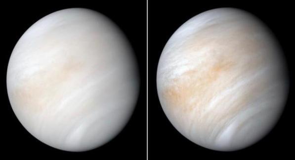 科学家发现金星有生命存在可能 具体什么情况?什么原因科学家发现有生命为什么?
