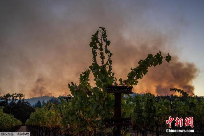 美加州湾区天气由凉爽转干热 威胁扑灭山火工作