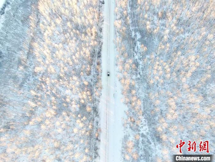内蒙古遭寒潮袭击 民众在温室与天然冷库间切换