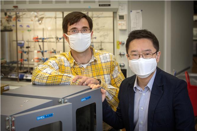 佛罗里达州立大学用木质素制造电解质 可提升电池容量和安全性
