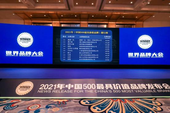 盈康一生上榜2021年《中国500最具价值品牌》