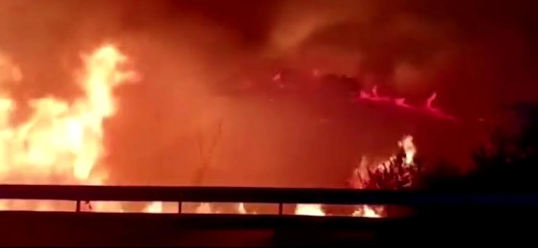 """天空被火光映红!西班牙南部城市突发山火,场面堪称""""恐怖电影"""""""