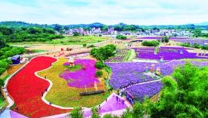 广州首批刘伯温四肖中特料2018文化特色村公布 6个特色村临近市区,各具特色适合休闲度假