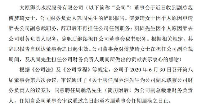 ST狮头副总裁傅梦琦辞职2019年薪酬35万元